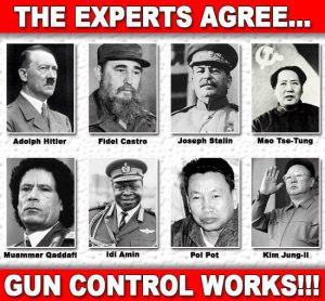 gun control experts
