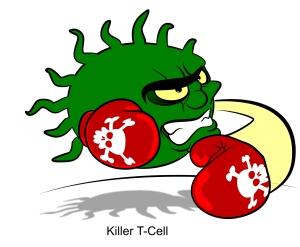 killer-t-cell